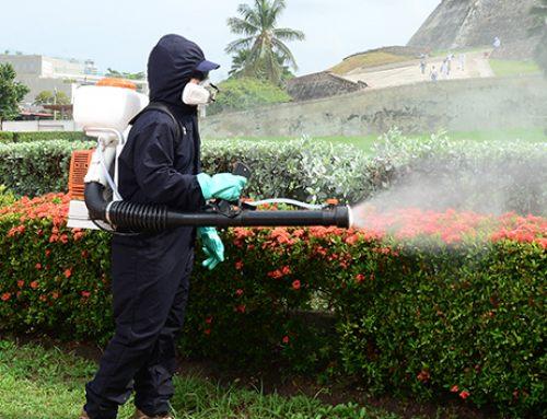 Fumigación en empresas de la costa caribe, una necesidad